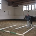Pferde Training